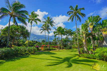 Overview - Condo 1205 06, Hanalei Bay Resort